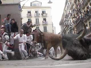 Autonomous Region of Navarre:  西班牙:  