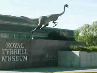 写真 Royal Tyrrell Museum 美術館、博物館