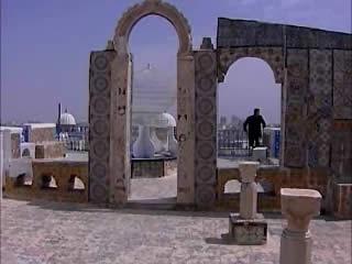 :      突尼斯