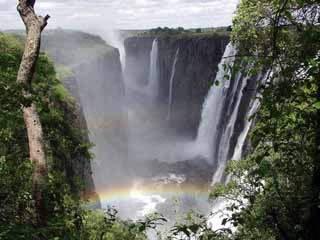 :      ザンビア