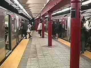 New York City:  United States:      Metro, New York City
