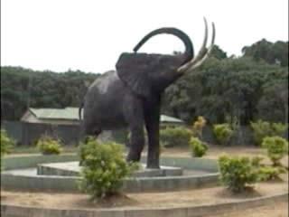 :      ナイジェリア
