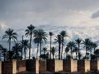 :      摩洛哥
