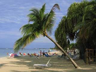ジャマイカ:      Negril