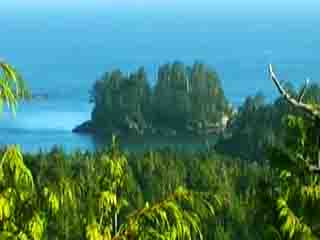 Vancouver Island:  British Columbia:  Canada:  