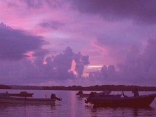 :      ソロモン諸島