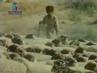 Images Sheep breeding in  Turkmenistan community