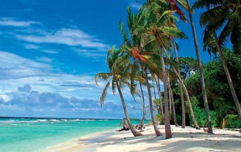 The most popular entertainments on Barbados: a variety of water sports, polo, golf, jeep safari, helicopter flights, beach parties, swimming with sea turtles, duty-free shoping