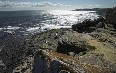 Cape of Good Hope Images