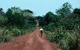 Central African Republic Images