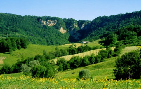 Franche-Comté is a place for tourists who love nature, tranquility and delicious food. There are rivers full of trout, mushrooms and berries in forests, amazing variety of local cheeses and excellent cooks, to prepare all these