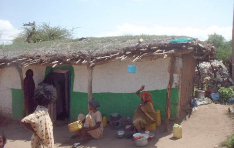 The city of Jijiga is known primarily for the fact that there grows Boswellia tree (Latin: Boswellia sacra), from which frankincense is produced