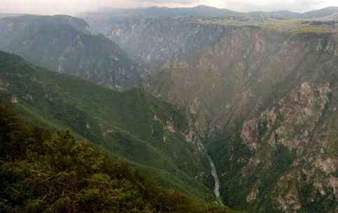 Tara River Canyon is the deepest in Europe (1300 meters) and the world's second after the Grand Canyon of Colorado (USA)