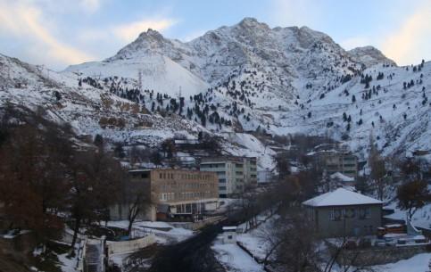 塔吉克斯坦:      Altyn Topkan