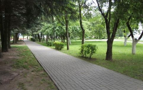 Солигорск:  Минск:  Беларусь:      Cанаторой Березка