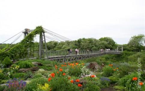 克里沃罗格:  第聂伯罗彼得罗夫斯克:  乌克兰:      Botanical Garden Krivyi Rih