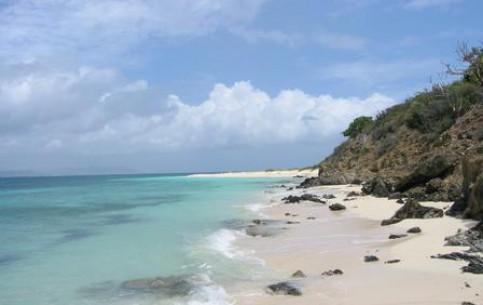 Санта-Крус:  Американские Виргинские острова:  Соединённые Штаты Америки:      Бак-Айленд-Риф