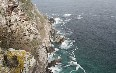 Cape Point صور