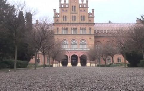 Черновцы:  Украина:      Черновицкий университет
