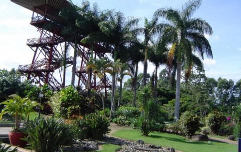 コロンビア:      Colombian National Coffee Park