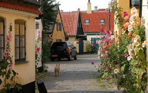 Denmark:      Dragor
