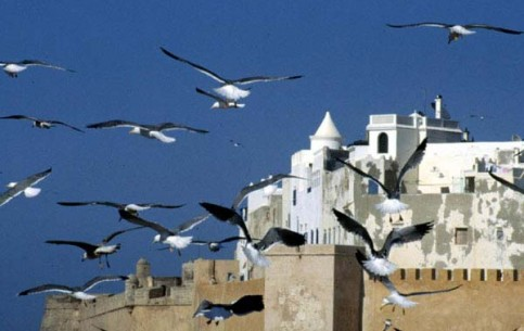 Essaouira -famous resort; world's surf  centre; unique ancient medina quarter; well-preserved