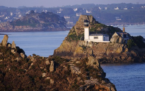 Brittany:  フランス:  