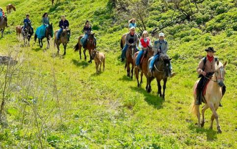 南非:      Guided Riding Tours