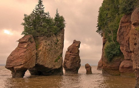 New Brunswick:  カナダ:  