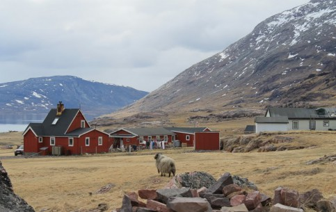 Greenland:  Denmark:      Igaliku & Qassiarsuk