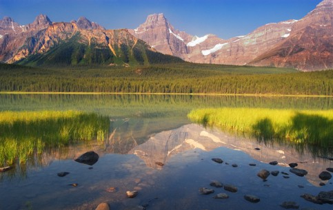 Alberta:  カナダ:      Jasper National Park