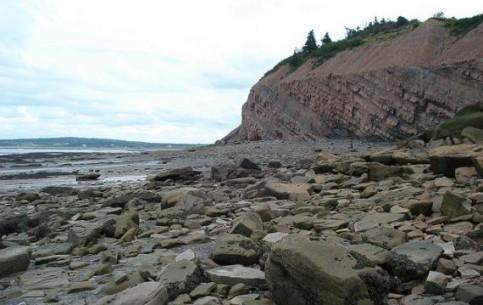 Nova Scotia:  Canada:      Joggins Fossil Cliffs