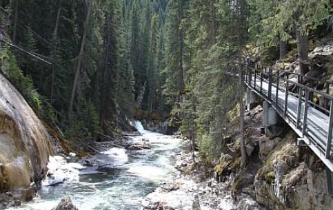 Banff:  Alberta:  カナダ:      Johnston Canyon