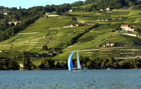 Switzerland:      Lavaux