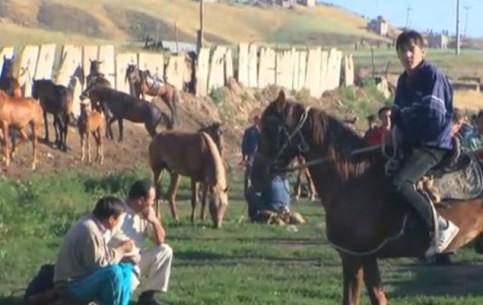 哈萨克斯坦:      Livestock market in Kazakhstan