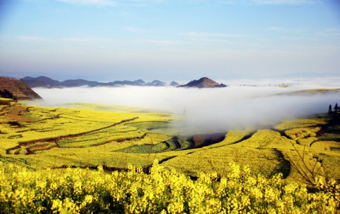 China:  