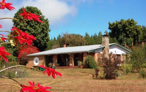 马拉维:      Luwawa Forest Lodge
