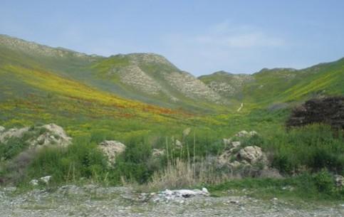 吉尔吉斯斯坦:      Mailuu-Suu