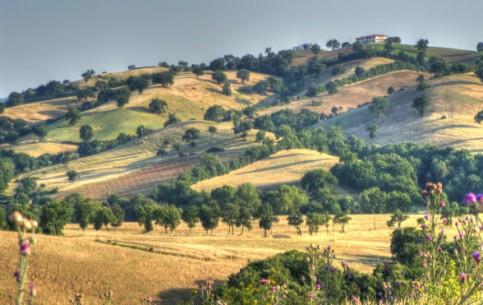 Тоскана:  Италия:      Национальный парк Маремма