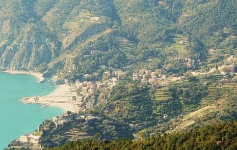 Liguria:  Italy:      Monterosso al Mare