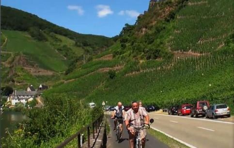 莱茵兰-普法尔茨:  德国:      Moselle Valley