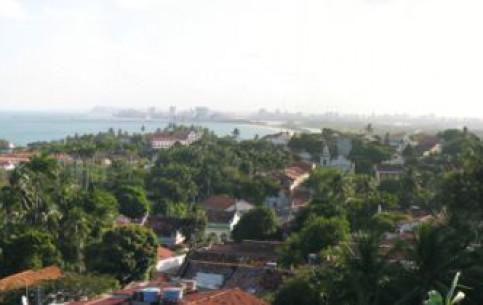 巴西:      奧林達