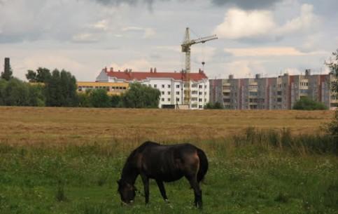 Khoyniki:  Gomel:  Belarus:      Park in Khoiniki