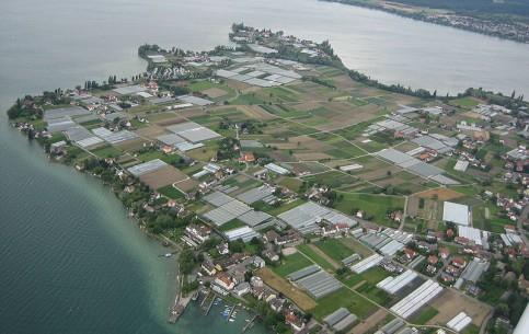 巴登-符腾堡:  德国:      赖兴瑙岛