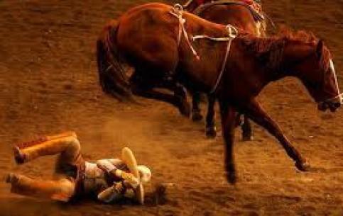 墨西哥:      Rodeo