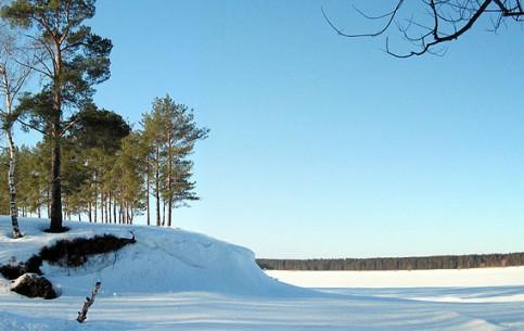 Ярославская область:  Россия:      Рыбинское водохранилище