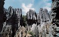Shilin Stone Forest Images