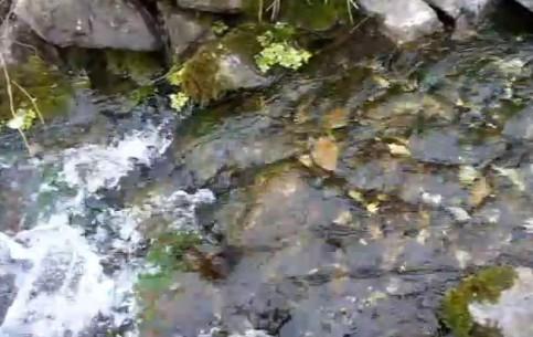 赫尔松:  乌克兰:      Springs of Nova Kakhovka