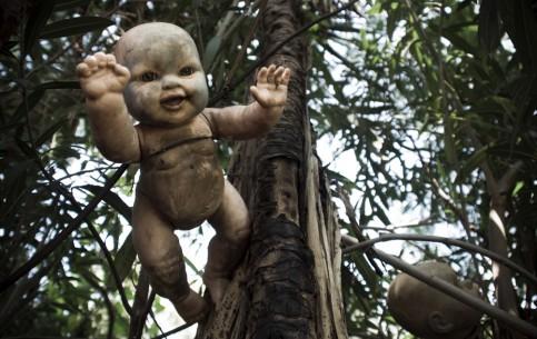 Мехико:  Мексика:      Остров кукол