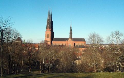 瑞典:      乌普萨拉